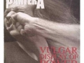 pantera_a_vulgar_display_of_power