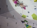 Final of the Lead Worldcup in Imst  Climbing