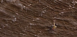 What These Climbers Found in Kentucky Was Not Fried Chicken... (Lost in North America, Ep. 10) (c) Epic TV