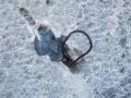 Plomo, die spanische Version der aus dem Yosemite bekannten Copperheads. Ein Bleibatzen mit dünner Drahtschlinge - das geniale Mittel, um hakentechnisch im kompakten Kalk dieser Wand vorwärtszukommen, zum Freiklettern allerdings völlig unbrauchbar. Nicht die reinen Schwierigkeiten als vielmehr diese marginale Absicherung macht das Unternehmen 'Sueños de Invierno' so anspruchsvoll. (c) Heinz Zak
