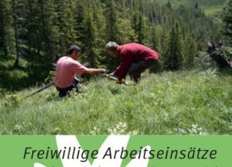 DAV 2013: Helferinnen und Helfer für den alpinen Schutzwald gesucht