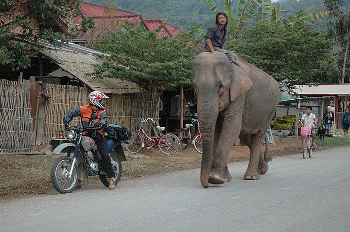 """Laos: Isa Schöffl geling Erstbegehung von """"Champa Nakon"""" (7c+/8a)"""