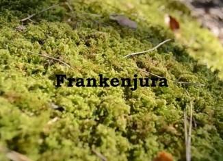 [VIDEO] Heiko Queitsch bouldert im Frankenjura (Teil 1)