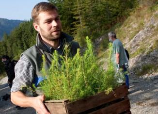 Setzlinge für die Aktion Schutzwald (c) Marco Kost