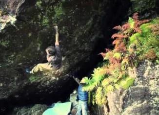 Kletterausrüstung Zürich : Kindergeburtstag im seilpark zürich standort zürcher unterland