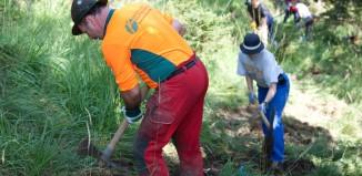 Aktion Schutzwald: Deutscher Alpenverein macht Wald, Wege und Zäune fit (c) DAV/Marco Kost