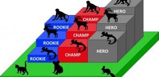 Gecko Trophy (c) SAC