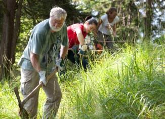 Aktion Schutzwald: Freiwillige Helfer packen bei der Aktion Schutzwald mit an (c) DAV/Marco Kost