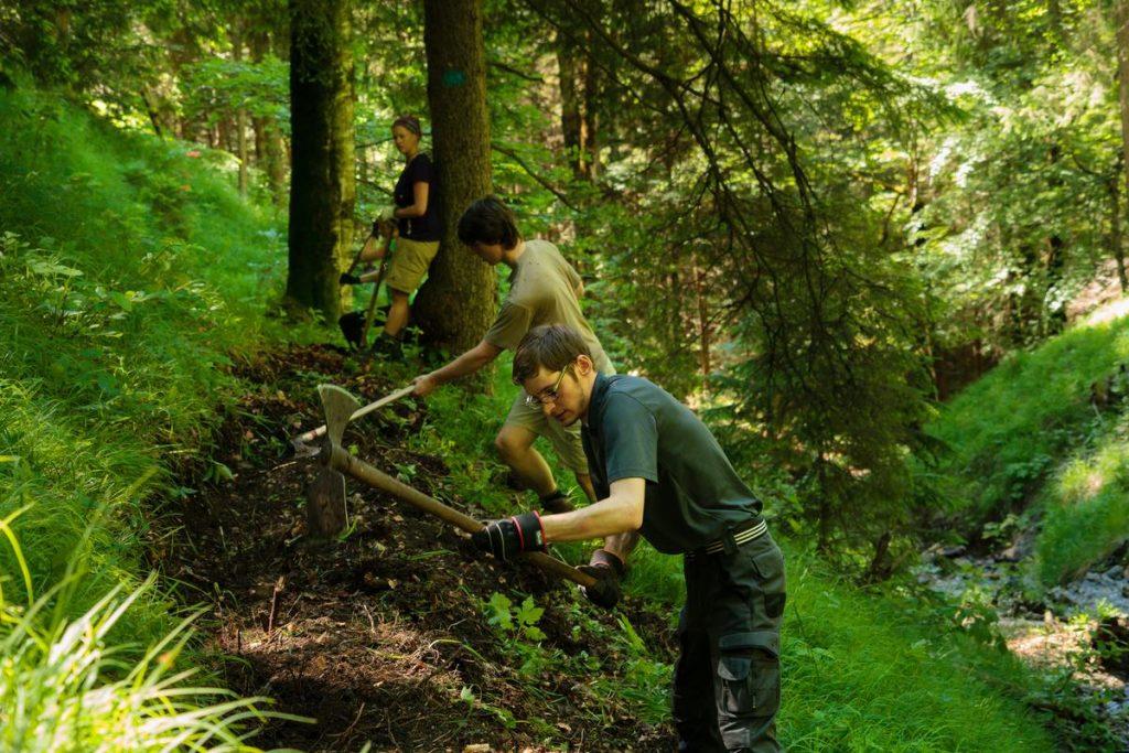 DAV Aktion Schutzwald (c) DAV/Arvid Uhlig