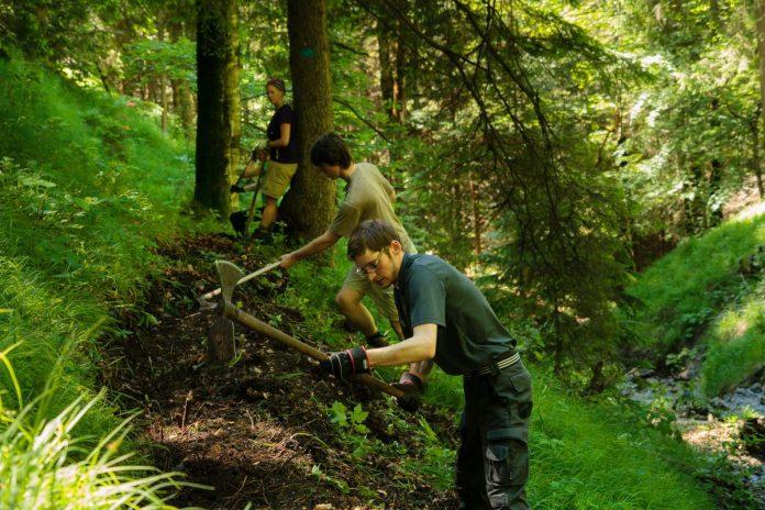 Die Aktion Schutzwald startet in die Saison (c) DAV/Arvid Uhlig